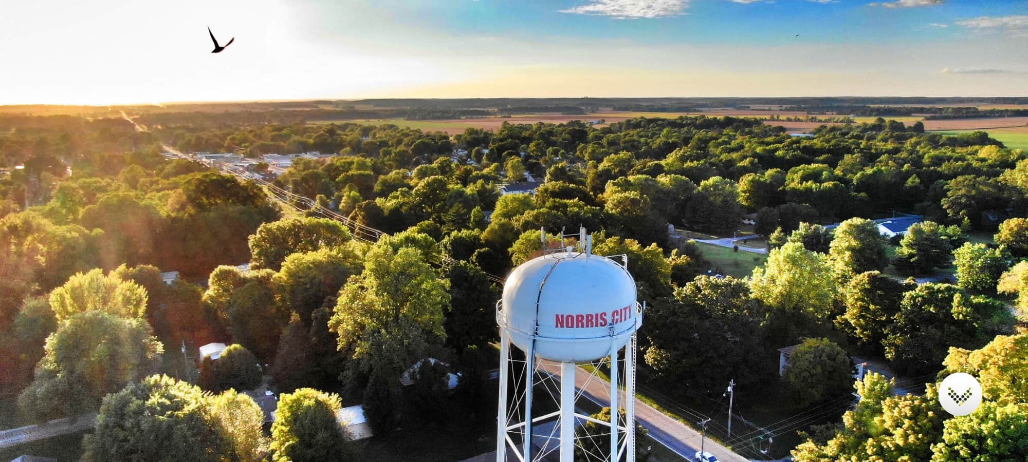 Norris City water tower situated among trees from an aerial perspective.